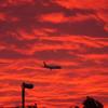 夕焼けと飛行機