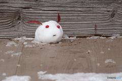 ようこそ、雪国へ ♪