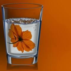 キバナコスモス風味の炭酸水