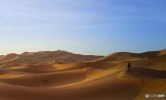 モロッコには予防接種も効かない伝染病が・・・!