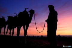 砂漠の夜明け ♪