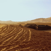 サハラ砂漠の原宿