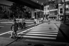 自転車が良く通る歩道