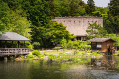 植物園散策 3