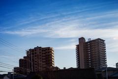 冷たい日の薄い雲