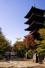 五重塔のある風景