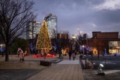 クリスマスツリーのある風景