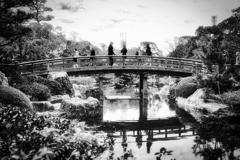 黄昏時の庭園