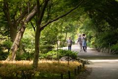 植物園散策 1