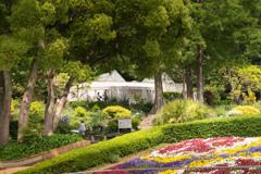 昼下がりの植物園 1