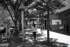 木陰を歩く