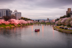 春の乙川 夕景 2