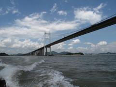 虎門大橋を眺める 中国