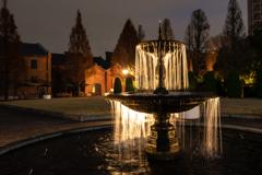 庭園の噴水