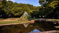 小さな池のある風景