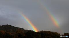 外に出たら虹が