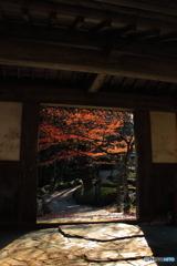 霊山院の秋