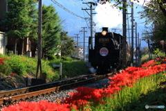 秋の蒸気機関車