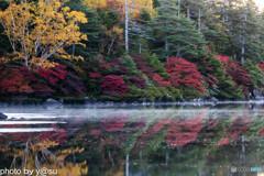 白駒池の紅葉Ⅱ