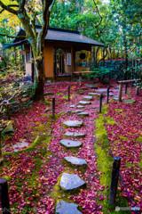 旧竹林寺の紅葉Ⅲ