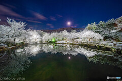夜の京都 雪景色③