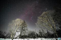 霧氷と冬の星空