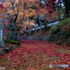 錦秋の寺院②