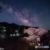 しだれ桜と夏の天の川