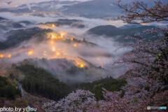 吉野山の雲海と千本桜③