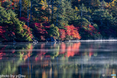 白駒池の紅葉Ⅵ
