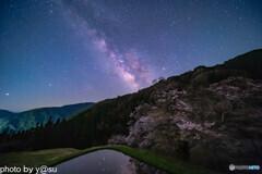 駒つなぎの桜と天の川