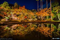 SHOZAN RESORT KYOTO 日本庭園の紅葉