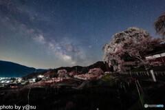 勝間薬師堂のしだれ桜と天の川①