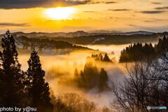 蒲生の棚田の雲海②