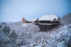雪化粧の清水寺