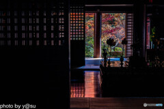 京都 西明寺の紅葉