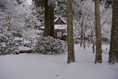 三千院 有清園・雪景