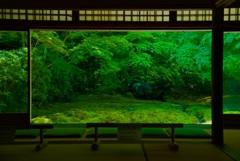 瑠璃光院 書院 瑠璃の庭