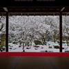 圓光寺 十牛之庭・雪景