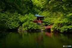 醍醐寺 弁天堂・新緑