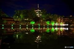 なら燈花会 猿沢池