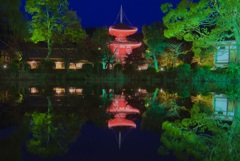 大覚寺 ー真紅の水鏡ー