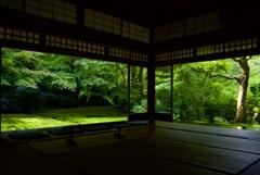 瑠璃光院 瑠璃の庭