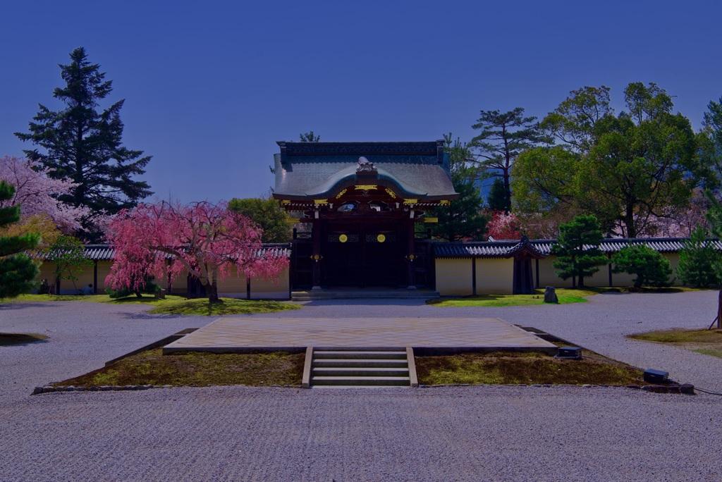 大覚寺 勅使門と石舞台