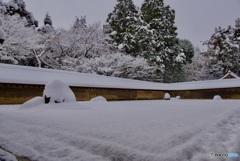 龍安寺 石庭・雪景