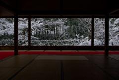 宝泉院 盤桓園・雪景