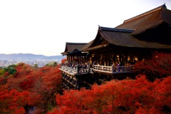 清水寺 舞台