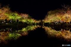 東寺 瓢箪池・水鏡