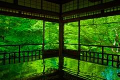瑠璃光院 書院・新緑