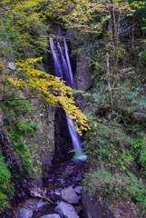 11月滝巡り14  三段の滝